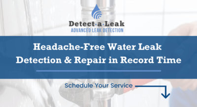 Detect-a-Leak MS